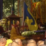 HH Karmapa under the sacred bodhi tree with his Dream Flag denoting the union of heaven and earth billowing out to send forth harmonious energy