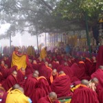 Monks under the Bodhi tree getting warm robes on in the early morning mist