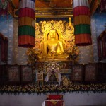 The Shrine room at Tergar Monastery